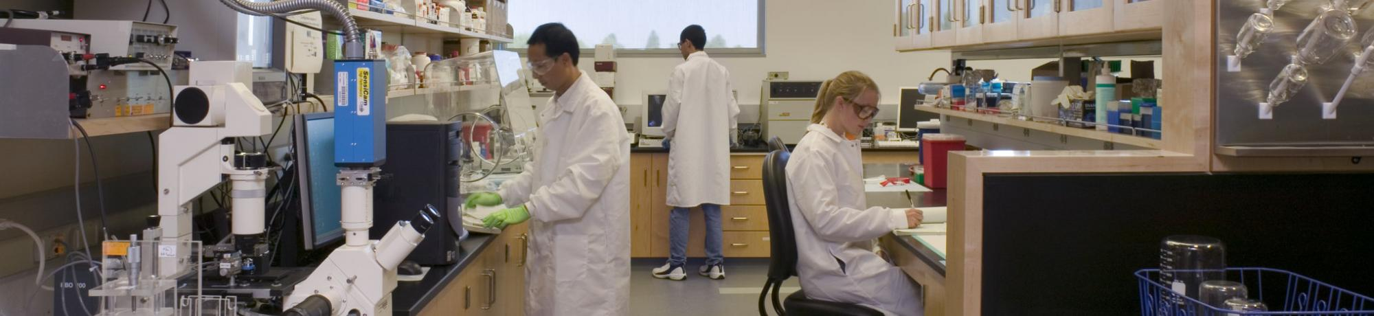uc davis biomedical engineering about